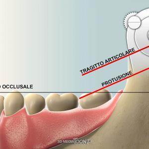 3DMedia Toonz! - Medical-scientific Illustration
